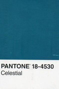 COULEUR PANTONE BLEU CANARD