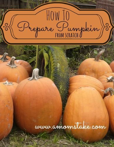 Preparing Pumpkin from scratch