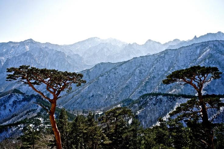 Mt. Seorak in Gangwondo. : )