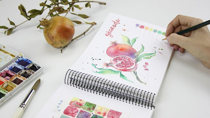 Ilustración botánica otoñal granada pintada con acuarela.   - Botanical illustration autumnal pomegranate painted with watercolor.