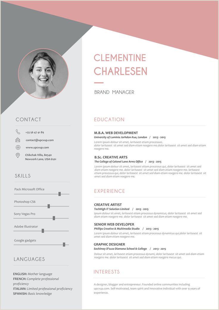 Exemple De Cv Moderne 2019 in 2020 Resume design