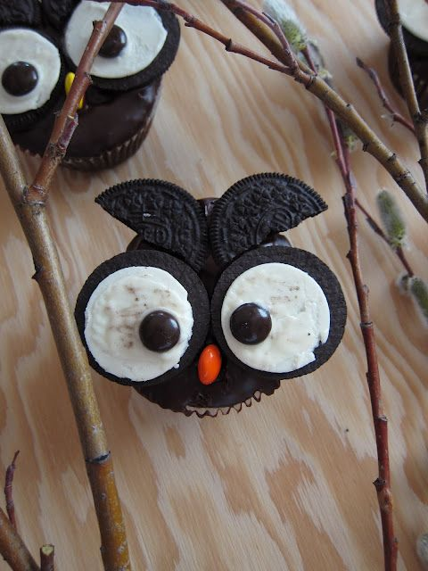 Owl cupcake design