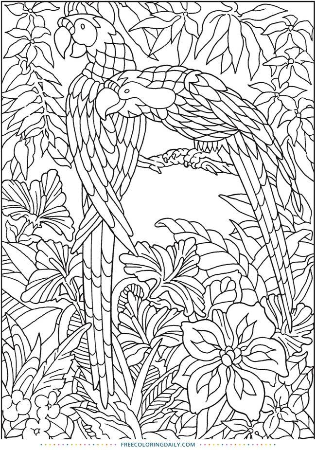 Free Jungle Coloring Page Jungle Coloring Pages Bird Coloring Pages Mandala Coloring Pages