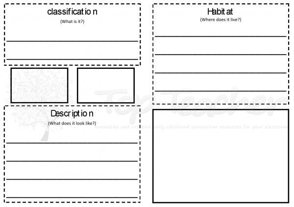 Animal report template primary Animal report – Templates for Report Writing