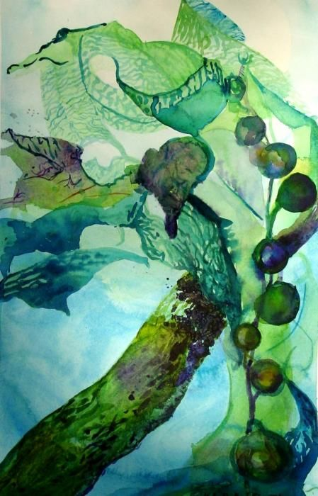 seaweed #LostOcean Colour palette inspiration!