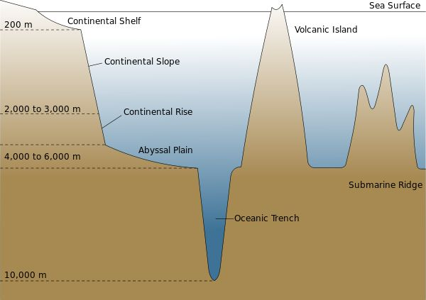 High School Earth Science/The Seafloor - Wikibooks, open books for an open world