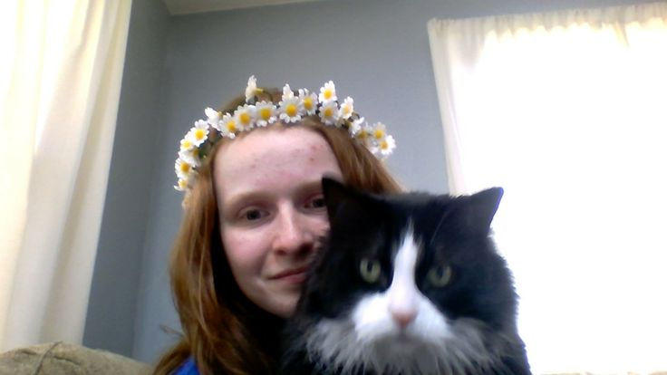 Mi gata se llama Cookie. No es amable o inteligente, y es muy difícil tomar una foto de ella.