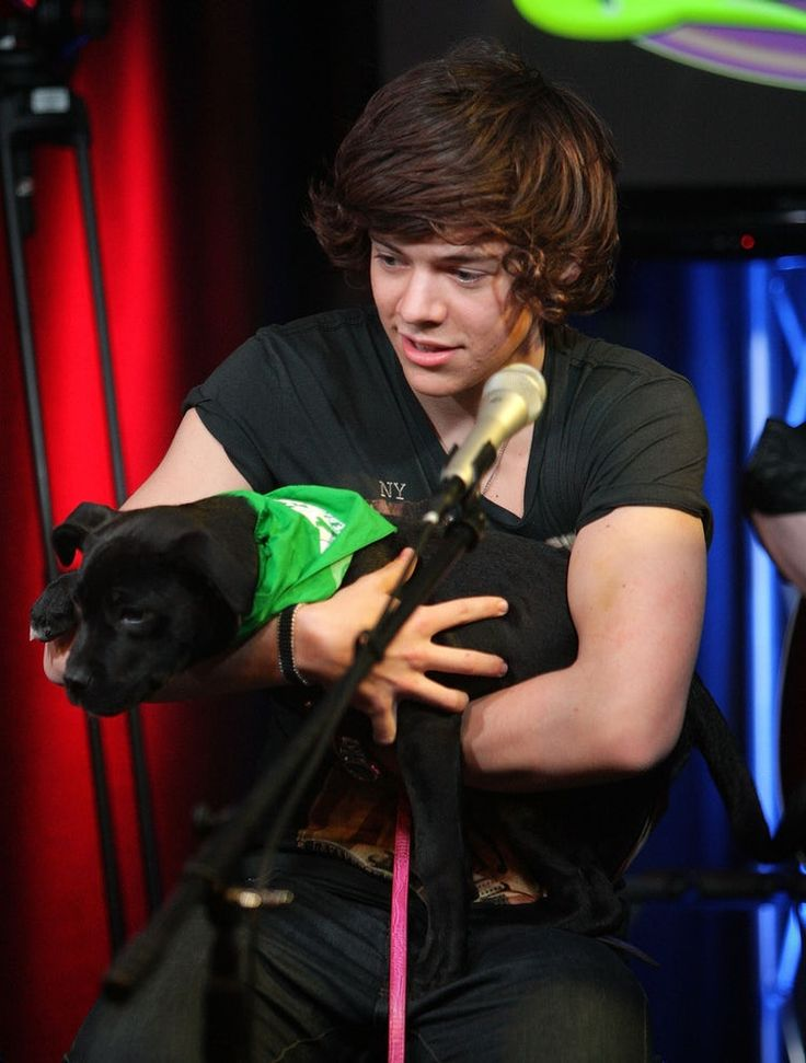 A Look Back at Harry Styles' History With Dogs & Yes, It's Adorable – Entertainments Weekly