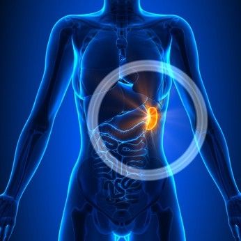 Spleen Pain Location, Meaning, Causes and Other Symptoms – Phaa.com