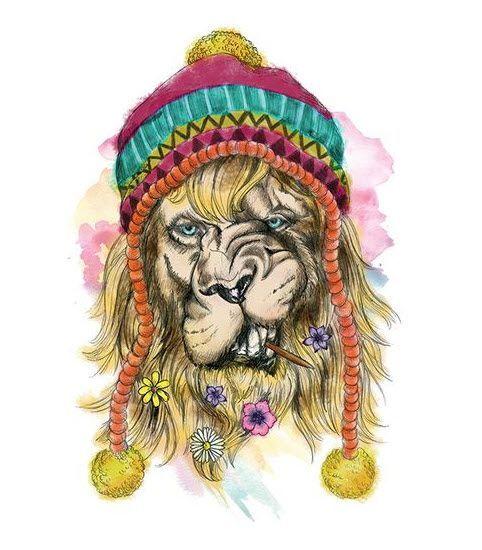 картинки льва с дредами что