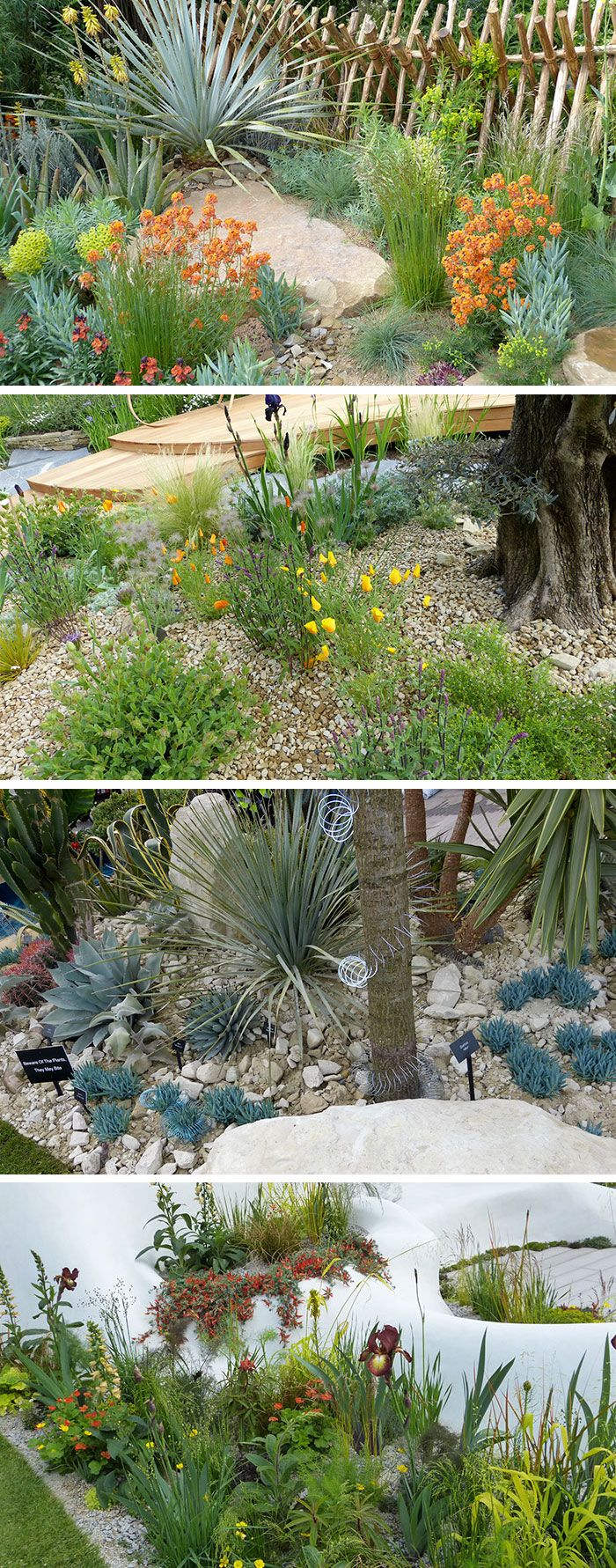 279 best chelsea flower show photos and plans images on low maintenance dry gardens perfect garden design that doesn t need watering