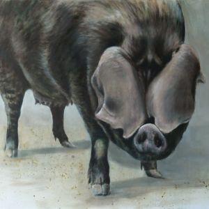 Large Black varken - Nanouk Weijnen | Beeldend kunstenares