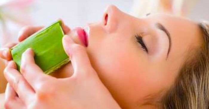 """(TruthSeekerDaily) Aloe vera is known as """"plant of immortality,"""" due to its myriad of uses for everything from acne to baldness, insomnia, digestive upsets, sepsis and cancer. Studies have shown that Aloe Vera can effectively treat a wide range of ailments. When used externally, it is very effective at treating insect bites, acne, sunburns, rashes,…"""