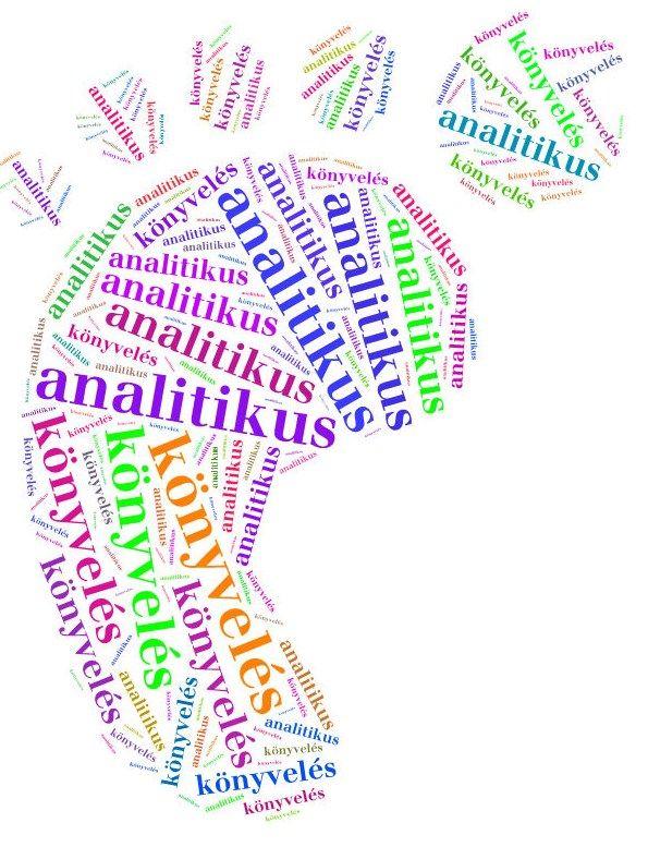 3. analitikus könyvelés...  részletes mennyiségi és értékbeli nyilvántartás. A főkönyvi könyvelésben az analitikus könyvelés során összegyűjtött, összevont, rendszerezett adatok feljegyzése történik, melyek a feladással kerülnek a főkönyvi könyvelésre  www.konyveloleszek.hu