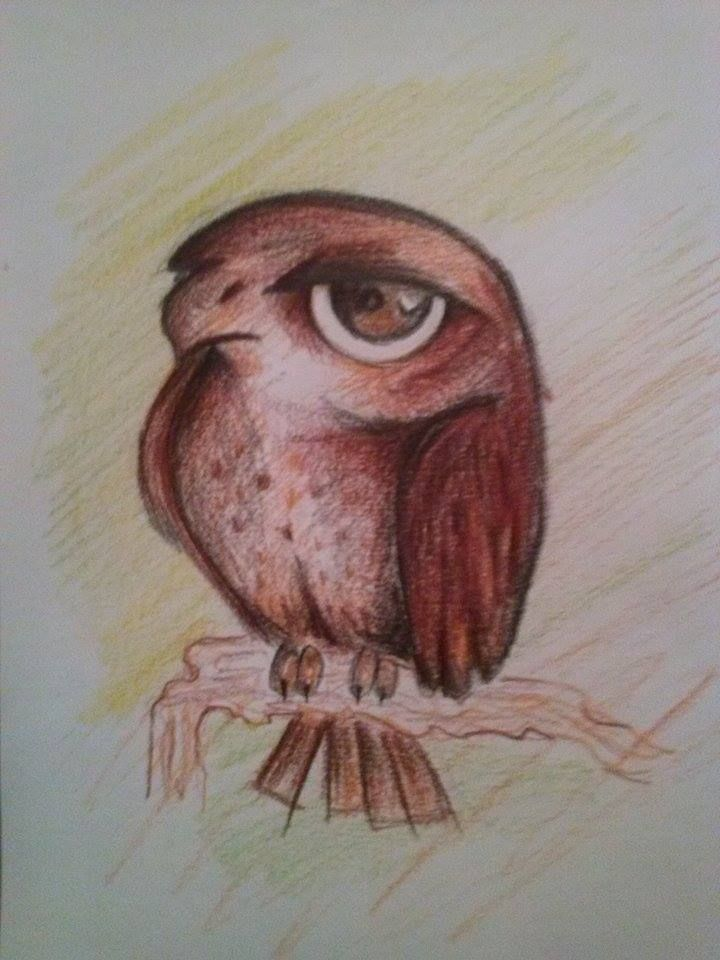 Falcon-kopija