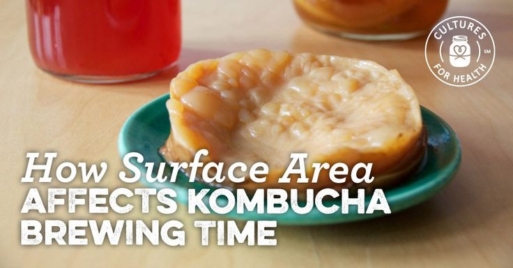 Kombucha Brewing Time: How Surface Area Affects Kombucha Brew Time