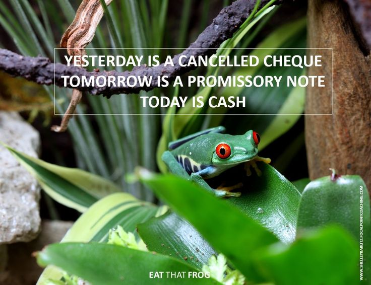 Yesterday is a cancelled cheque, tomorrow is a promissory note, today is cash!  #EatThatFrog #EatThatFrogEdmonton