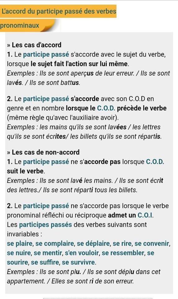 Epingle Par Jennifer Hoffman Sur فرنسي Verbes Francais Participe Passe Projets Scolaires