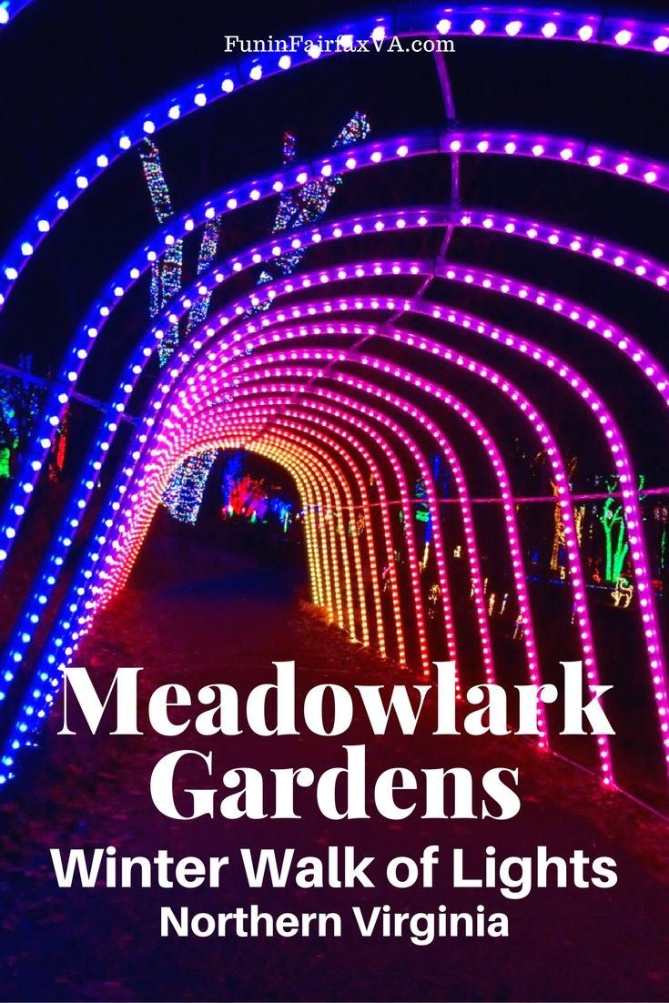 Meadowlark Gardens Winter Walk of Lights offers outdoor-themed displays that make for a beautiful and fun holiday outing close to Washington DC in Vienna, Virginia.