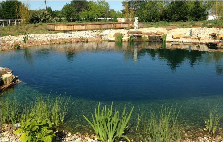 Natural Swimming Pool In Texas Done Following The Total Habitat E Book Natural Swimming Pools