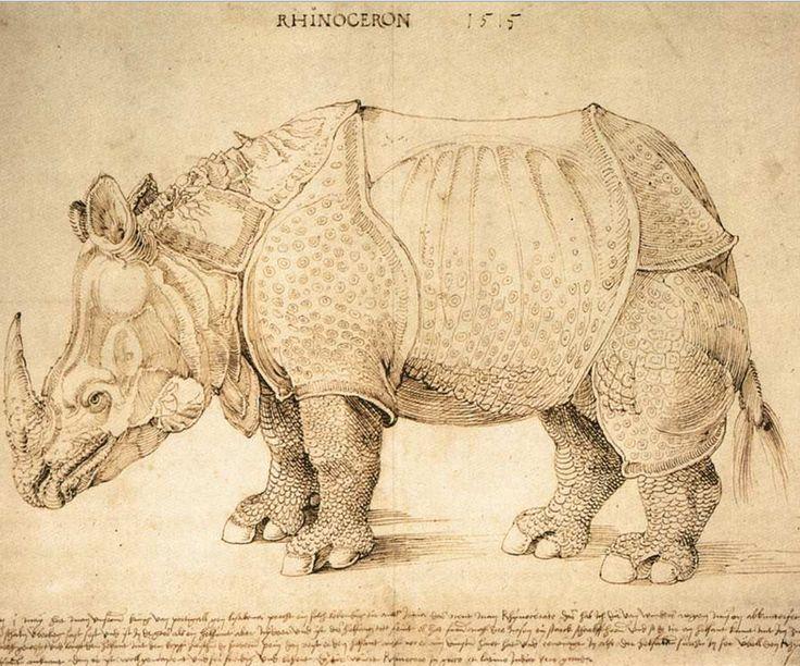 Rhinoceros. Durer. 1515. Pen drawing. 274 x 420 mm. British Museum. London.