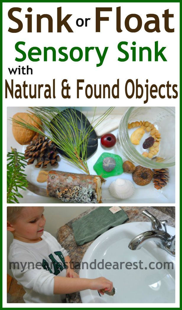 Sink or Float Sensory Sink with objects from nature and objects found outside. A simple science experiment for toddlers or preschoolers,
