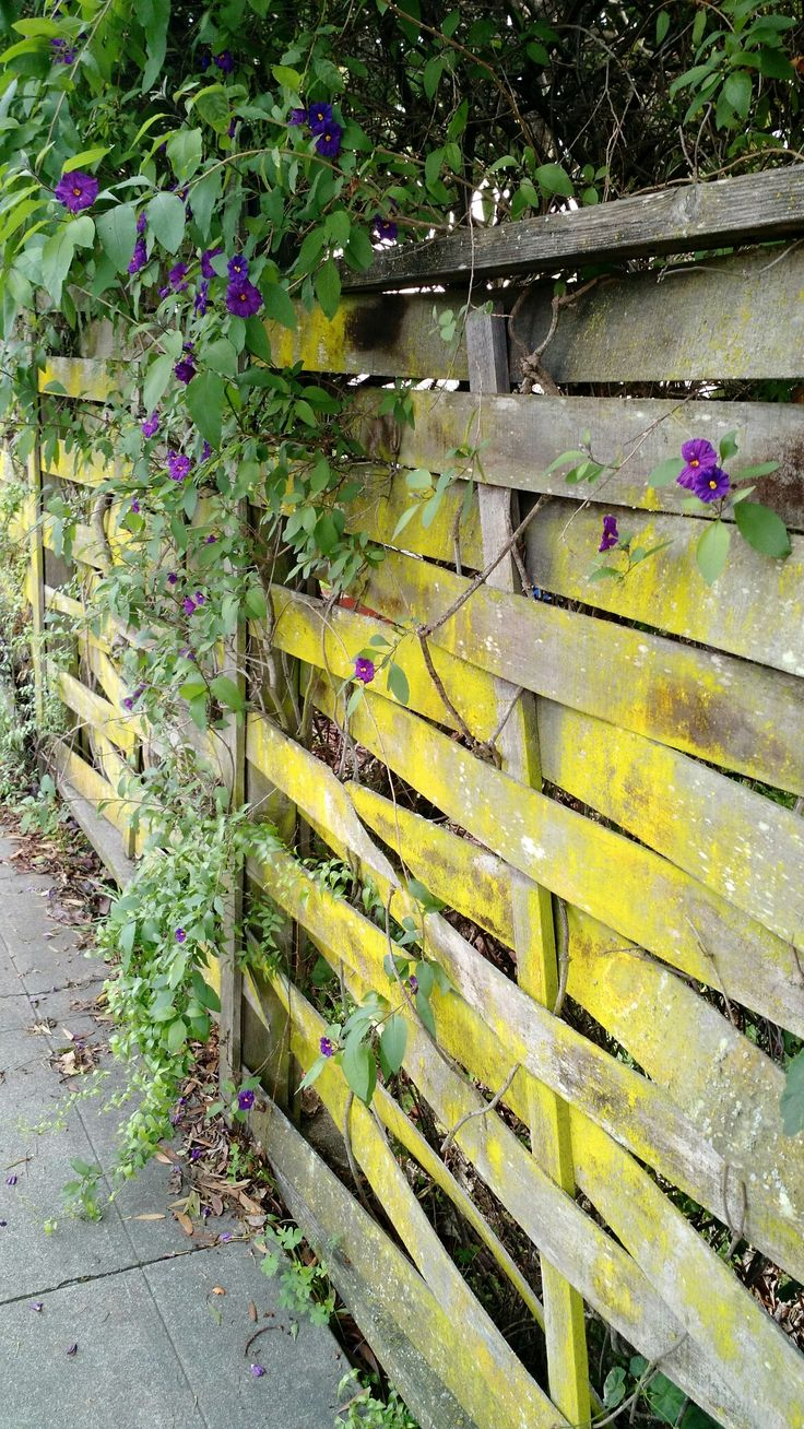 318 best Fences and Walls images on Pinterest | Landscaping ...