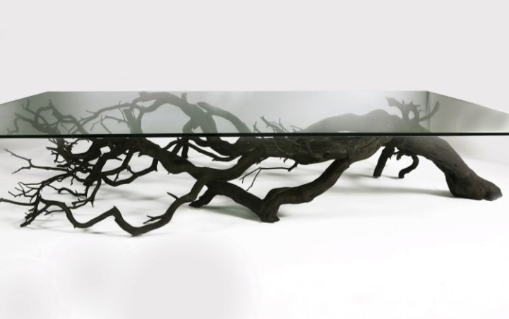 Artist and designer Sebastian Errazuriz found this branch lying on the side of the road, and made it into shelves