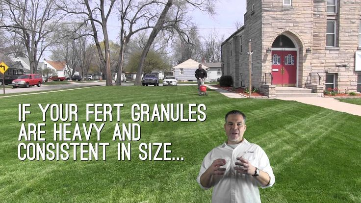 The best organic lawn fertilizer - it's got to be easy to get for homeowners, and deliver great results... the winner is:
