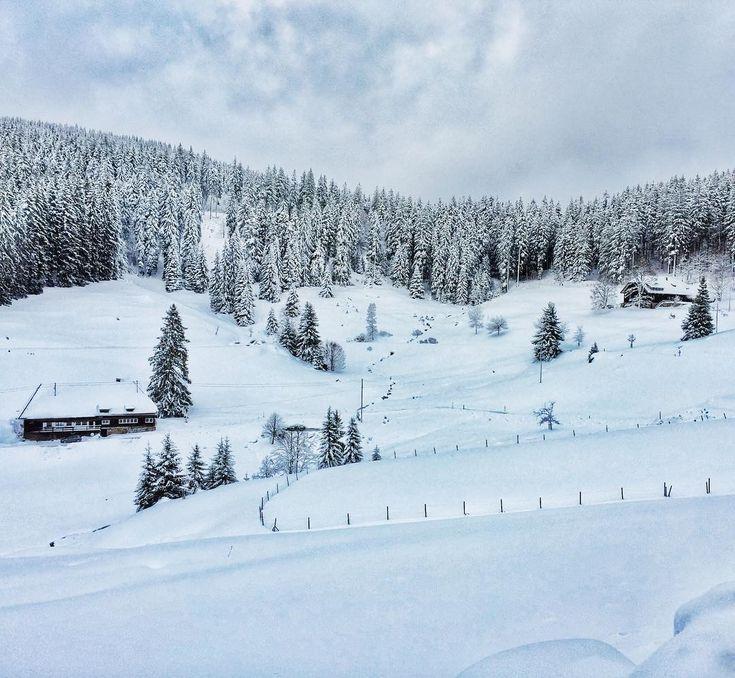 schwarzwaldoutdoor. Schluchsee, Baden-Wurttemberg. Tief verschneit ❄️und hinter Wäldern versteckt, liegt ein wahres Kleinod für Naturliebhaber! #hochschwarzwald #schwarzwaldoutdoor #schwarzwald #winter #schnee #weiß #wald #raus #verzaubert #winterliebe #schneeschuhwandern #schneeschuhtour