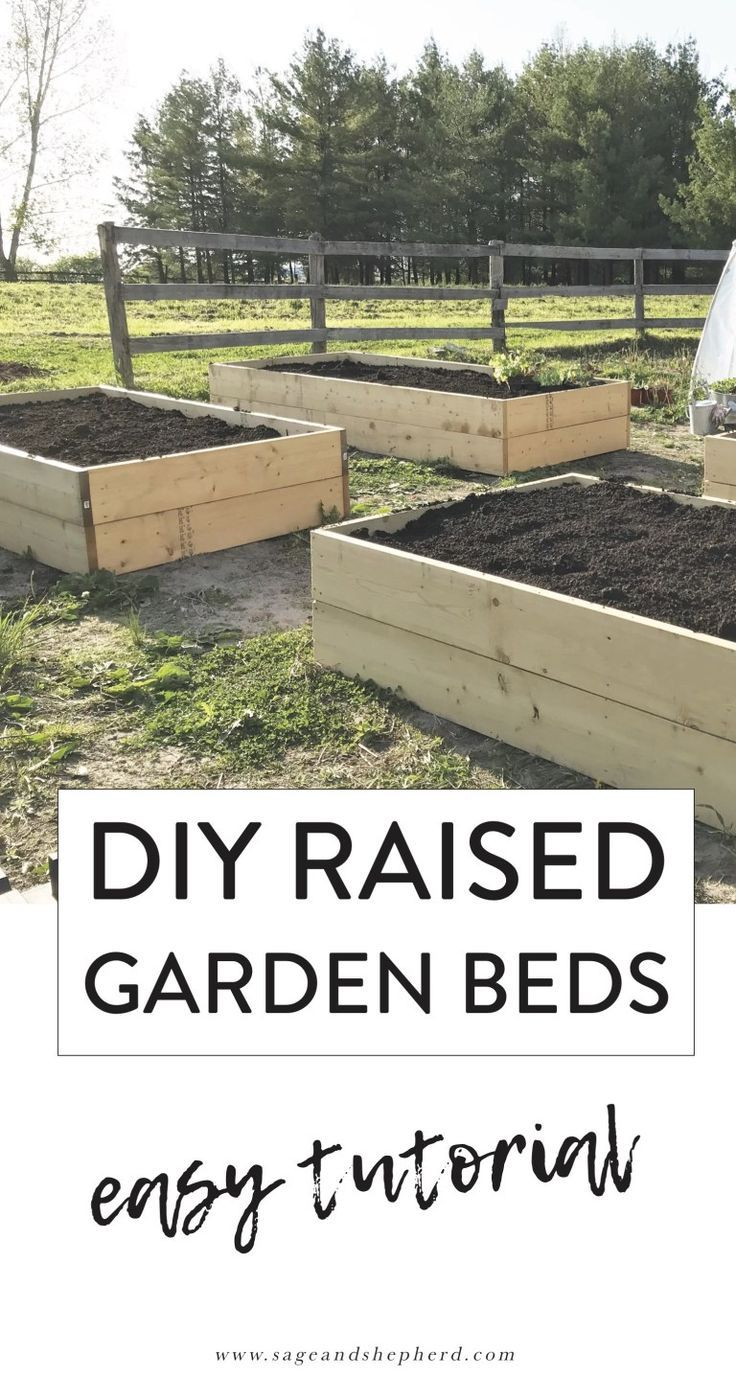 How To Build Raised Garden Beds An Easy Diy How To Build Raised Garden Beds An Easy Diy Sage Raised Garden Building A Raised Garden Raised Garden Beds Diy
