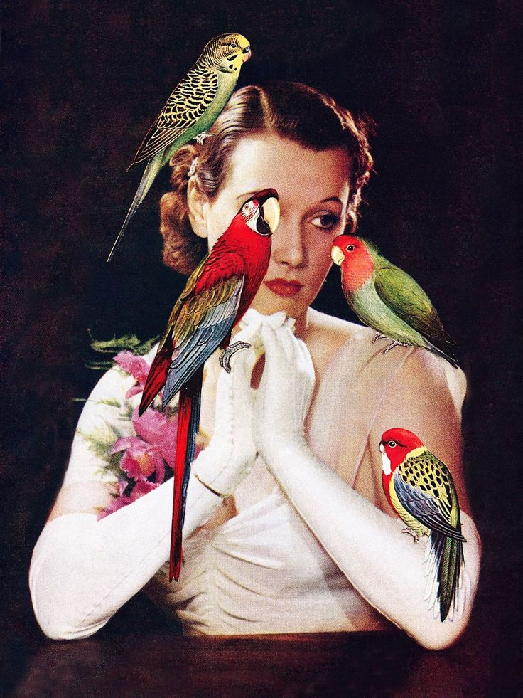 Bird Lady via Eugenia Loli Collage. Click on the image to see more!