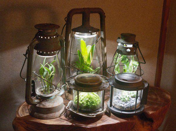 アンティークランプが熱帯魚の水槽に!?ランプに映えるその姿が華麗すぎる - Spotlight (スポットライト)