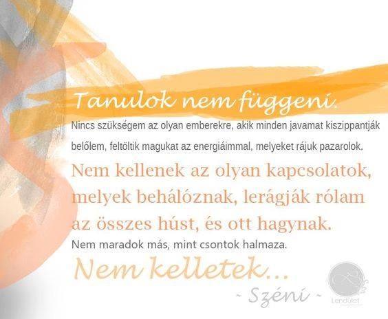 #nemkell #független #függetlenedés #széni #idézet #lenduletmagazin #hungarianblogger #followme