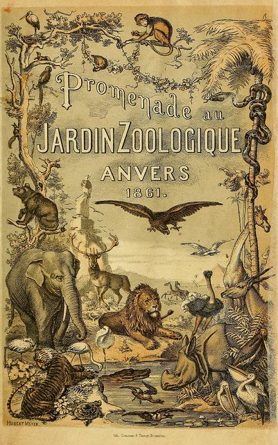 Promenade au Jardin Zoologique Anvers 1861by BioDivLibrary on Flickr. Promenade au jardin zoologique dAnvers /.Anvers :J.-E. Buschmann,1861..biodiversitylibrary.org/page/41045896
