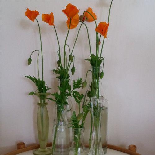 Vaser og hyacintglas
