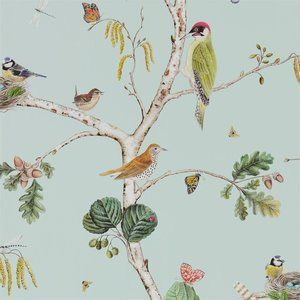 Behang Sanderson Woodland Chorus- Woodland Walk Collectie  Het behang Sanderson Woodland Chorus is afgeleid van een 18e eeuwse tekening, maar dan van nu. Met in waterverf geschilderde vogels en in...