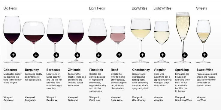 Types of Wine Glasses - The Juice | Club W