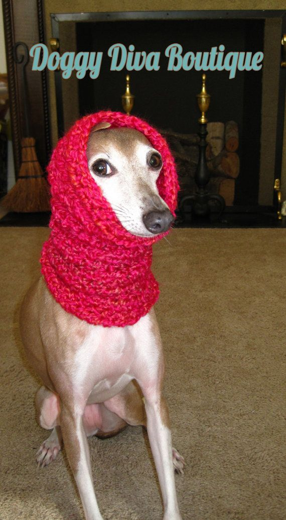 47 best italian greyhound clothing images on pinterest