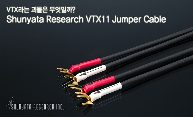 Shunyata Research VTX11