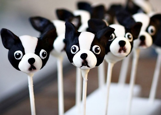 Boston Terrier Cake Pops!: