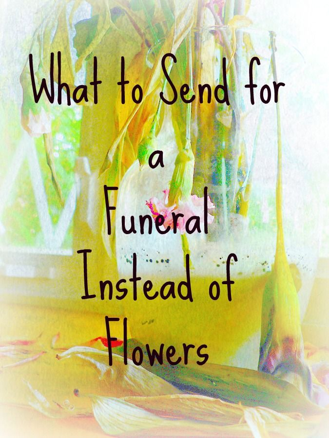 what to send for a funeral instead of flowers