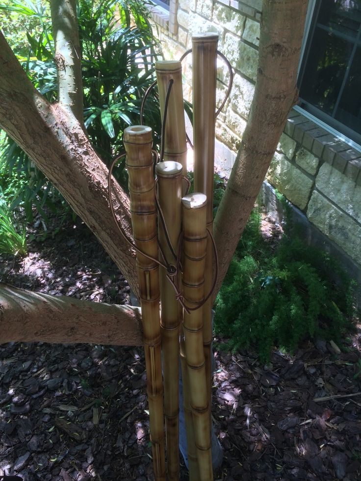 Images about bamboo staffs escrima fighting sticks