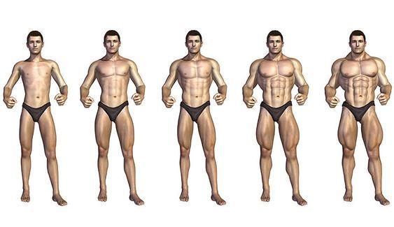 Diese 5 Kraftübungen reichen, um rundum fit zu werden