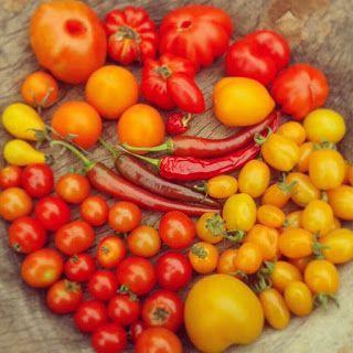 http://stadstuinierenmetpit.blogspot.nl/2016/03/tomaten-zaaien-zomerse-zoetheid.html
