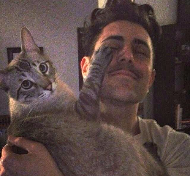 Two of my favorite things: Cats and Davey Havok. So cute!