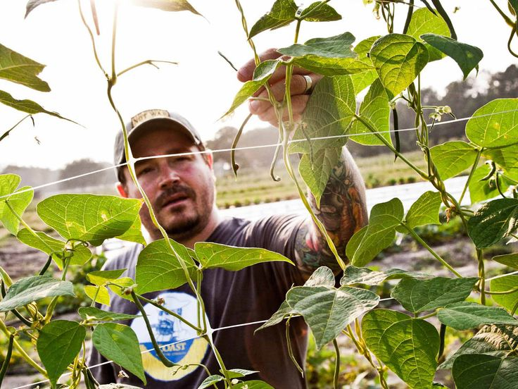 Husk chef Sean Brock is a seed-saver and a book-hoarder, collecting old classics and community cookbooks with the aim, he says, of owning every American cookbook that was printed in 19th century. Here are a few of his favorites.