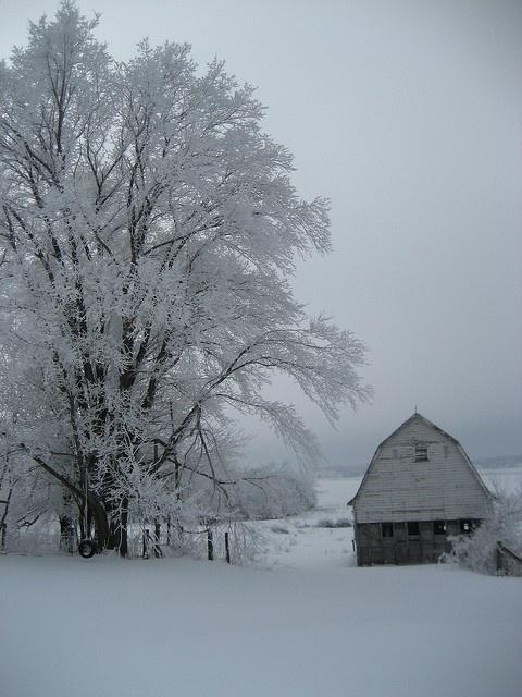 country snow scene