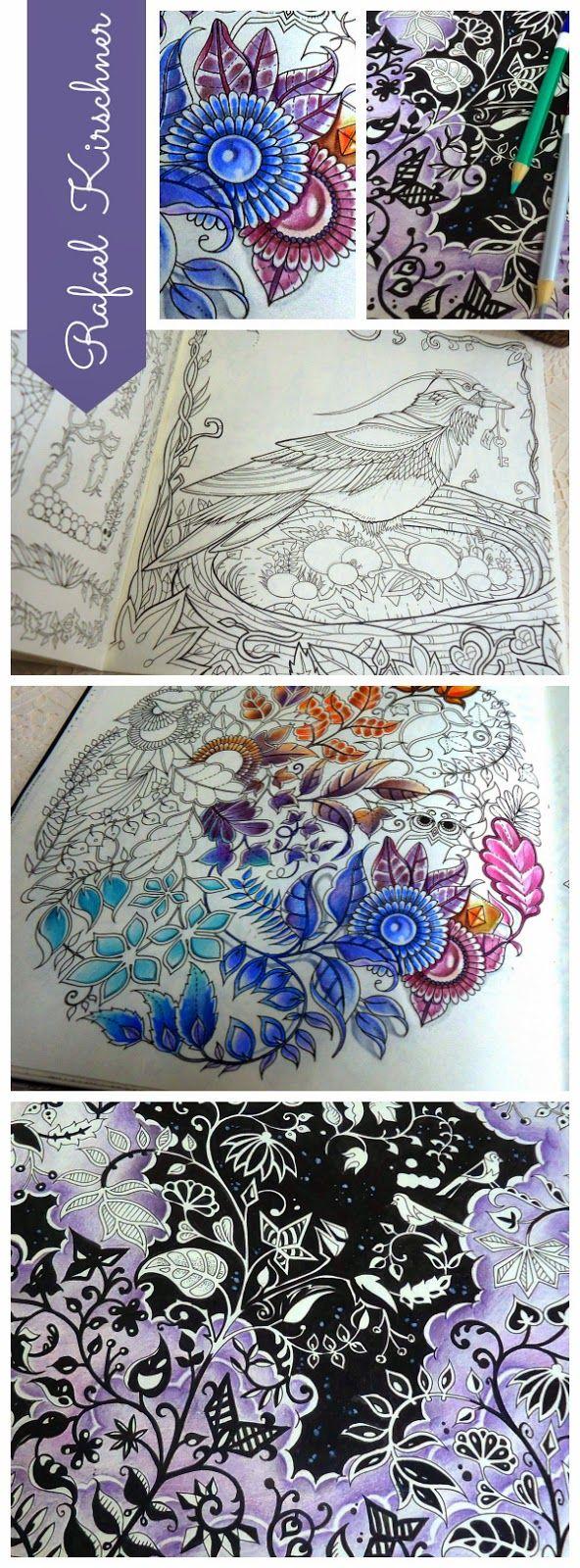 Atelier Gina Pafiadache Dicas Para Colorir Os Livros Jardim Secreto E Floresta Encantada Secret Garden Coloring BookJohanna
