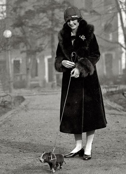 Walking the pig, 1925.